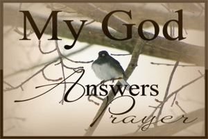 God Answers Our Prayer